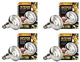 Exo Terra Sun-Glo Basking Infrared Spot Lamp, 150-Watt/120-Volt (4 Pack)