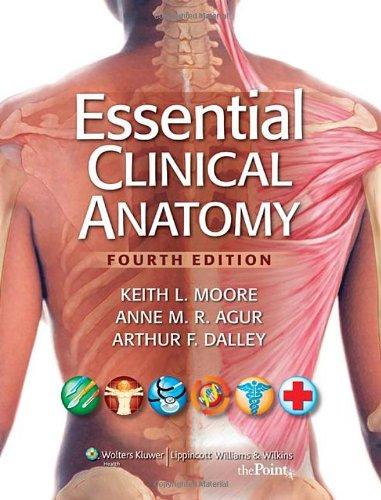 Essential Clinical Anatomy Pdf