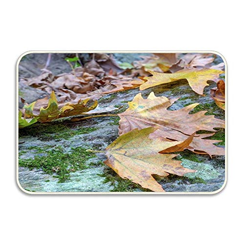 Findguage Door Mat Low Profile Washable Carpet (16X24) Colorful Autumn Leaves Lying On A Boulder Covered with Green Moss