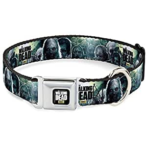Buckle Down Dog Collar Reviews