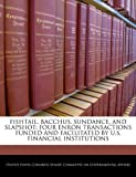 Fishtail, Bacchus, Sundance, And Slapshot: Four Enron Transactions Funded And Facilitated By U.S. Financial Institutions