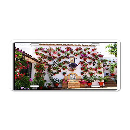 - Blingreddiamond Cordoba Patio for Mrs. Gregg Personalized Novelty License Plates, Custom Decorative Front for US Vehicles, 12 x 6 in