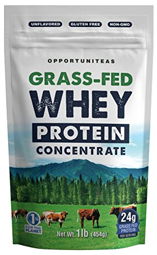 Grass Fed Whey Protein Powder Concentrate - Premium Unflavored Protein Perfect For Any Smoothie, Shake, Drink or Food. No Gluten, Non GMO, & Cold Processed From Raw Milk of Wisconsin Cows - 1 pound