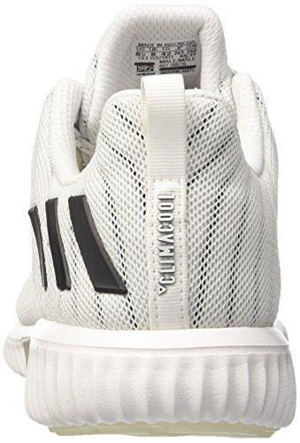ftwbla Cm Climacool Negbas Chaussures Diverses Pour Adidas Plamet De Couleurs Hommes Course 1aSzawxH