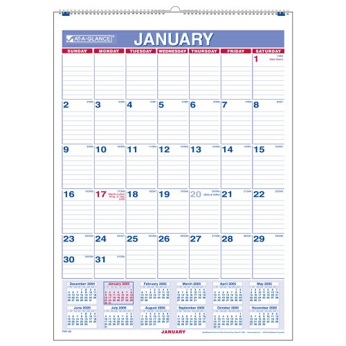 AT-A-GLANCE Monthly Wall Calendar, 2010 (PM128)