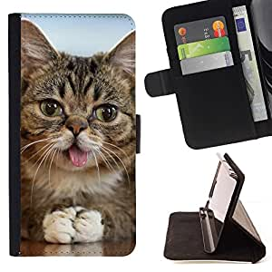 Momo Phone Case / Flip Funda de Cuero Case Cover - Americana lengua del gato de pelo corto Mestizo; - LG Nexus 5 D820 D821