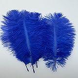 royal blue centerpieces - Sowder 20pcs Natural 10-12inch(25-30cm) Ostrich Feathers Plume for Wedding Centerpieces Home Decoration(royal blue)