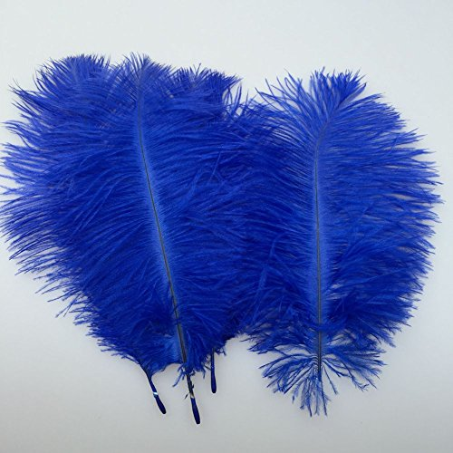 Sowder 20pcs Natural 10-12inch(25-30cm) Ostrich Feathers Plume for Wedding Centerpieces Home Decoration(royal (Royal Centerpieces)