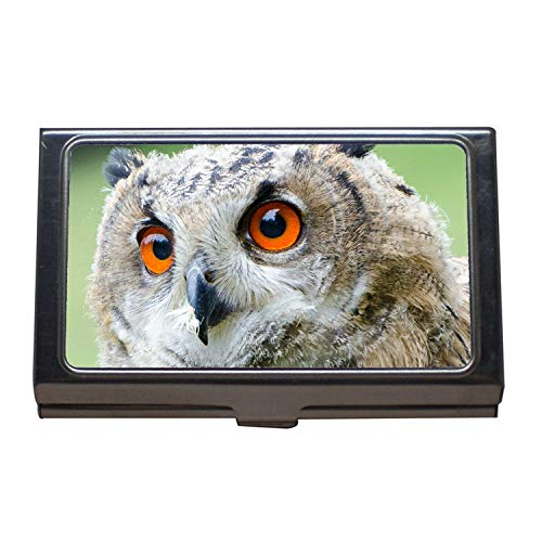 Business Card Holder Wallet Credit Card ID Case,owl Europ u00e4ischer Uhu Bubo Bubo Eurasian Eagle Owl Portrait,Business Card Case Stainless Steel, (Uhu Owl)