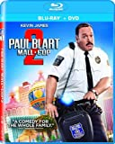 DVD : Paul Blart: Mall Cop 2 [Blu-ray]