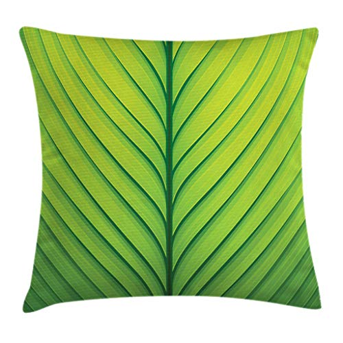 - Ambesonne Green Throw Pillow Cushion Cover, Wavy Striped Texture of a Green Leaf Macro Close Up Graphic Fresh Plant, Decorative Square Accent Pillow Case, 16 X 16 Inches, Lime Green Apple Green