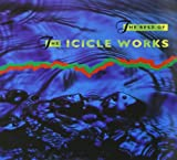 the Icicle Works: The Best of the Icicle Works (Audio CD)