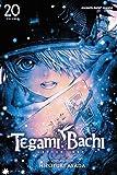 Tegami Bachi, Vol. 20