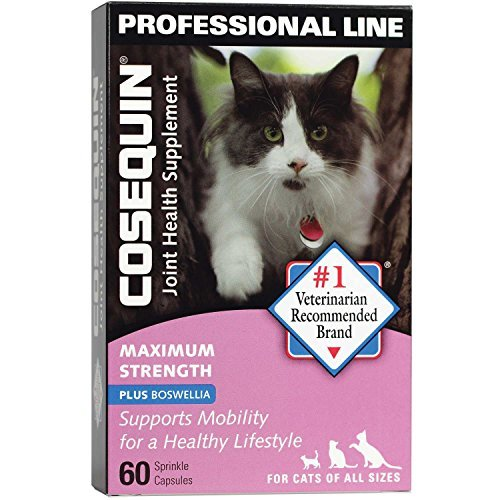 Sprinkle 60 Capsules (Cosequin Joint Health Plus Boswellia Cat Supplement, 60 Sprinkle Capsules by Cosequin)