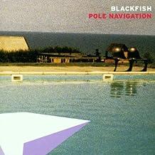 Pole Navigation by Blackfish