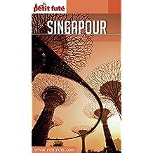 SINGAPOUR 2016/2017 Petit Futé (City Guide)