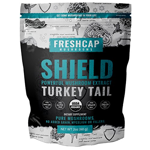 (Shield - Turkey Tail Mushroom Extract Powder - USDA Organic -60 g- Supplement - Immune Protection - Add to Coffee/Tea/Smoothies-Real Fruiting Body No Fillers)
