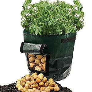 Coltivazione Di Patate Borsa Contenitore Fioriera Fai Da Te Pe Panno Piantatura Orto Giardinaggio Verdura Vaso Da Coltivazione Coltiva Borsa Attrezzo Da Giardino 2 Pezzi-Verde Scuro 30 X 35 Cm 9 spesavip