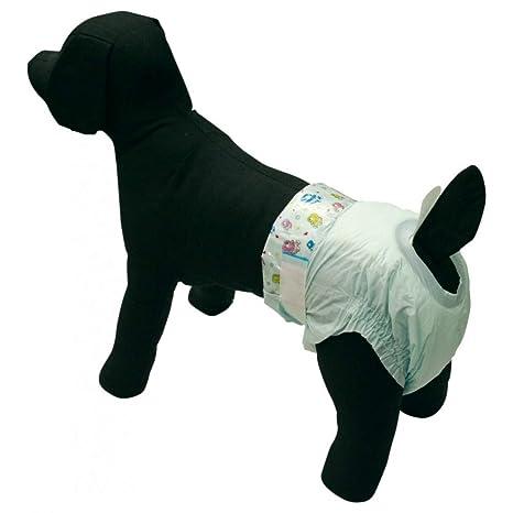 Trade Shop traesio10 X Braguitas pañales higiénicas para Perro USA y Desechables Talla Large 47 x