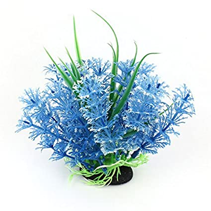 Amazon.com : eDealMax acuario ornamento planta Simulación de agua, 7, Blanco/Azul : Pet Supplies