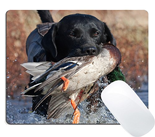 - Wknoon Gaming Mouse Pad Custom Design, Duck Hunting Dog Puppy