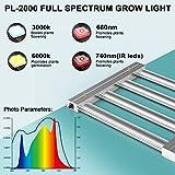 Phlizon 2020 Pro Series 2000W LED Grow Light 4x4ft