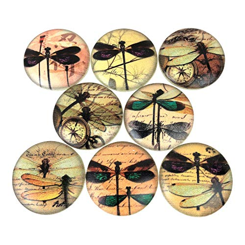 (Set of 8 Dragonfly Typography Wood Cabinet Knobs)