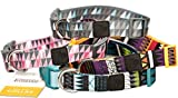 Dog Collar with Pattern Design Nylon Adjustable by Friends Forever (Medium, Geometric Pink)
