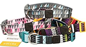 Dog Collar with Pattern Design Nylon Adjustable by Friends Forever (Medium, Tribal Teal)