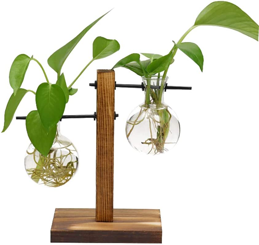 FuTaiKang One Set Water Planting Glass Vase Double Clear Glass Vases Hanging Plant Terrarium with Retro Solid Wooden Stand for Hydroponics Plants Home Office