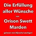 Die Erfüllung aller Wünsche Hörbuch von Orison Swett Marden Gesprochen von: Aljoscha Laschgari