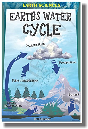 Earths Water Cycle - NEW Meteorology Classroom Science Poster