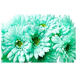 Silk Flower Arrangements CraftMore Mint Colored Gerbera Daisy Stems 14 Inch Set of 12