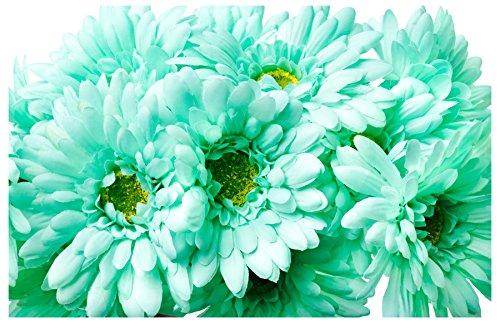 CraftMore Mint Colored Gerbera Daisy Stems 14 Inch Set of 12 (Gerber Daisy Decor)
