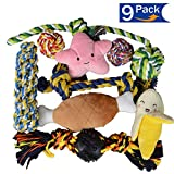 BLUEISLAND Dog Toys for Small Dogs Puppies, Dog Rope Toys and Dog Squeaky Toys, 9 Pack Durable Dog Chew Toys and Cute Plush Toys Review