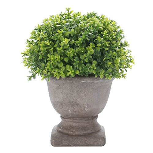HC STAR Artificial Plant Potted Mini Fake Plant Decorative Lifelike Flower Green Plants - 1301 (Decor Fake Books)