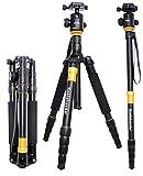 Best Tripod Manfrottos - koolehaoda Q-666 SLR Camera Tripod Monopod & Ball Review