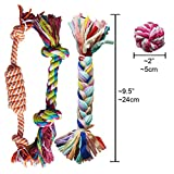 Puppy-Chew-Teething-Rope-Toy-Small-Set-Mini-Dental-Pack