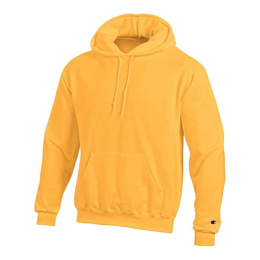 Champion Men's Double Dry Action Fleece Pullover Hood