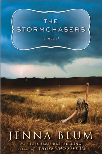 The Stormchasers: A Novel