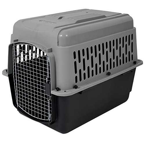 Aspen Pet Porter Heavy-Duty Pet Carrier,Dark Gray/Black,30-50 LBS (Midwest Icrate Double Door Folding Dog Crate)