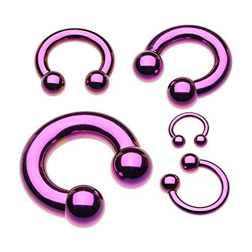 WildKlass Jewelry Basic Horseshoe Circular Barbell 316L Surgical Steel (Sold - Purple Circular Barbell