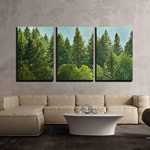 (wall26 - 3 Piece Canvas Wall Art - Forrest of Green Pine Trees on Mountainside with Rain - Modern Home Decor Stretched and Framed Ready to Hang - 24