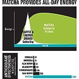 Matcha Green Tea Powder - Epic Matcha - 51G0fYU2ZQL - Matcha Green Tea Powder – Epic Matcha