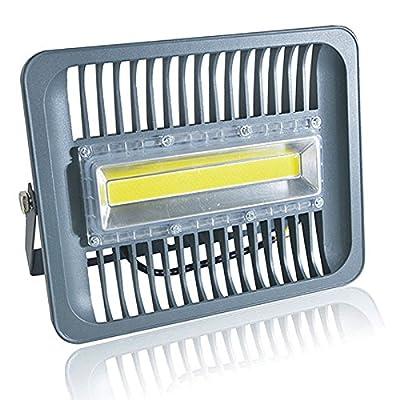 Cold White, 70W 230V : LED Flood Light 100W 50W 30W Floodlight IP65 Waterproof AC220V 230V 110V Spotlight Refletor LEDs Outdoor Lighting Garden Lamp