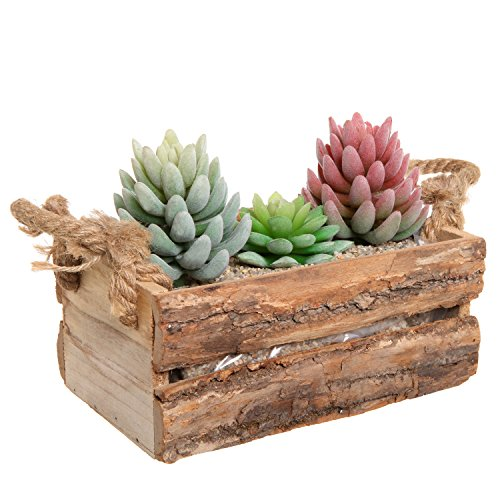 Wood Pot (Country Rustic Natural Wood Plant Box Pot / Windowsill Flower Container / Small Decor Holder -)