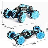 Remote Control Car,Gesture Sensing Transformation Car Model,Remote Control Cars for Kids Rechargeable,Christmas Stunt RC Car Gesture Sensing Twisting Vehicle Drift Car Driving Toy Gifts