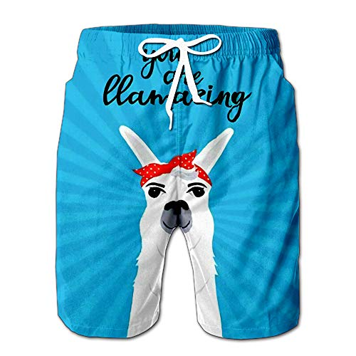 (Lama in Scarf Pin Up Style You are Llamazing Quote Men Swimwear Volley Pants Pocket L)