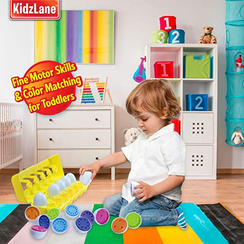 Buy toddler educational toys
