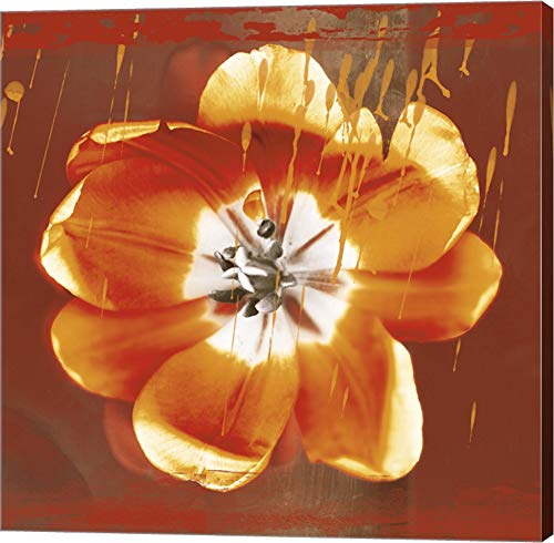 - Tulip Fresco (red) by Erin Clark Canvas Art Wall Picture, Gallery Wrap, 22 x 22 inches